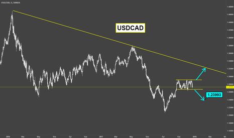 USDCAD: USDCAD / Haftalık Görünüm