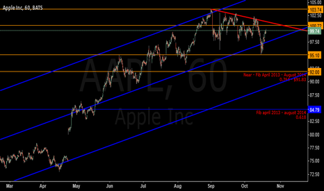 AAPL: waiting for action around $100
