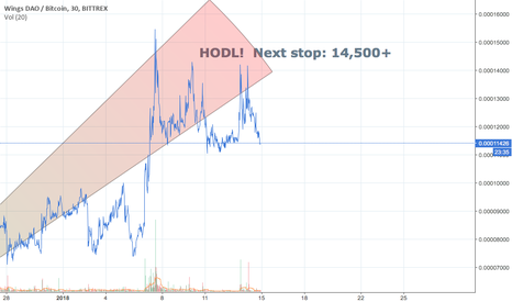 WINGSBTC: HODL Wings and Prepare to Take Off!!!