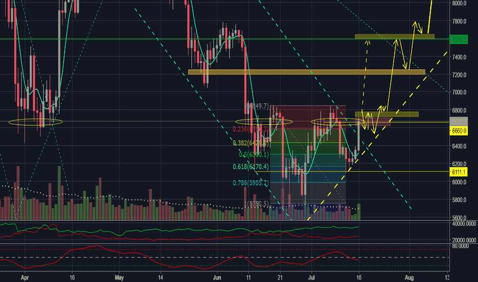 BTCUSD: Zero Dark Thirty