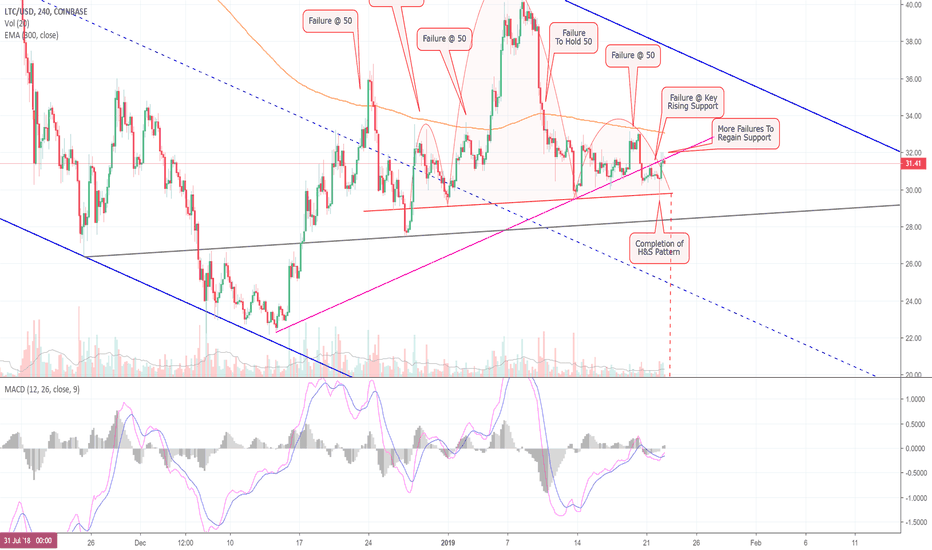 LTCUSD: If Things Don't Improve Quickly, Litecoin Could Plummet! (LTC)