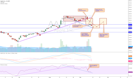 AAPL: AAPL (9/14/13) Daily Analysis