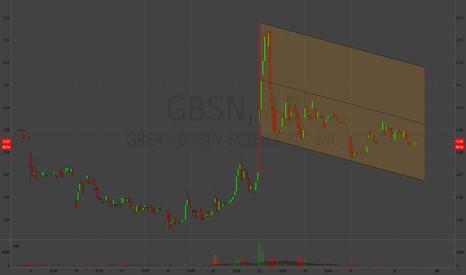 GBSN: Flag
