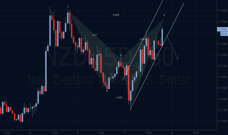 NZDUSD: Bearish Shark