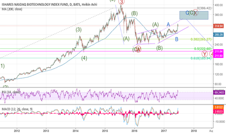 IBB: First idea, with Elliott Wave on IBB long term.