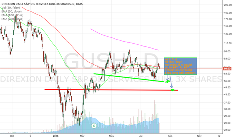 GUSH: Let us build long call position at bottom