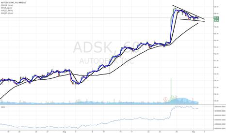 ADSK: $adsk Hourly Chart