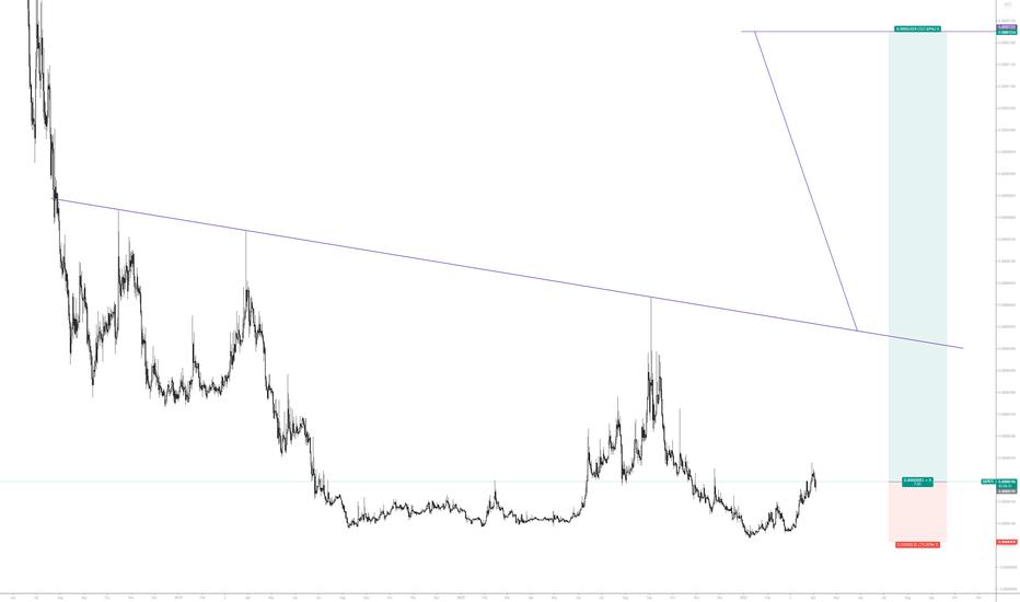 tradingview qsp btc