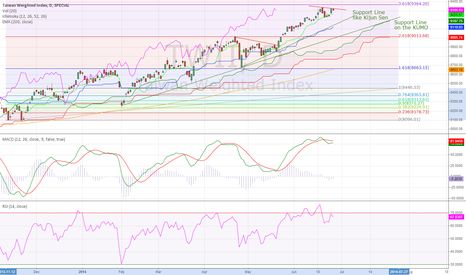 TWII: Taiwan Weighted Stock Index Daily (29.06.2014) Technical Analysi