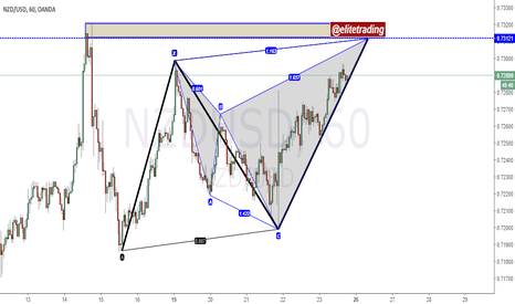 NZDUSD: nzdusd ab=cd and a shark