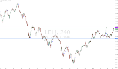 LE1!: Live Cattle Range