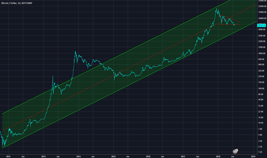 BTCUSD: BTC since 2012. We can see where BTC goes.