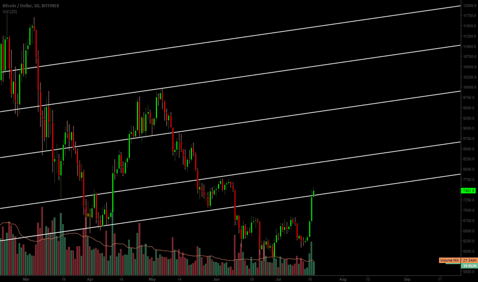 BTCUSD: Levels to Watch