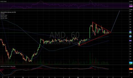 AMD: Bullflag