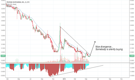 PPCB: Silent buying...