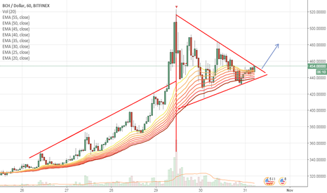 BCHUSD: Expecting a breakout of Pennant pattern
