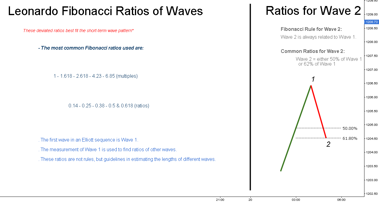 Leonardo Fibonacci Ratios of Waves // Educational ®