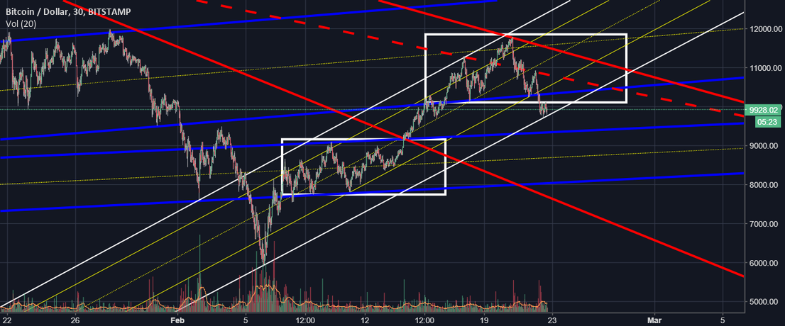 BTC Still Bull, Still no bear confirmation