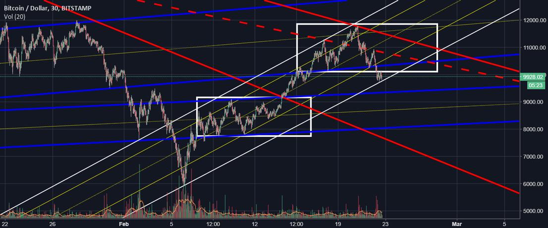 BTC Still Bull, Still no bear confirmation