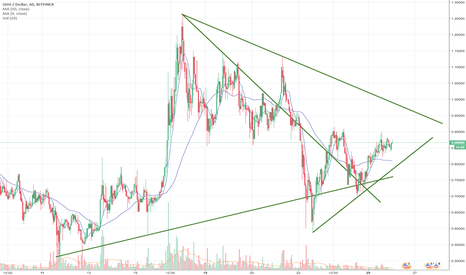 QSHUSD: QASHUSD buy & hold