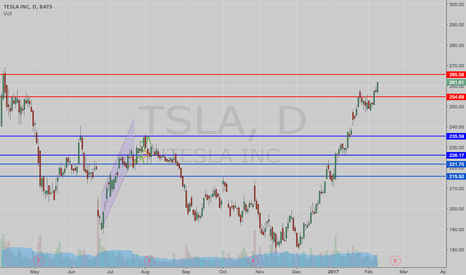 TSLA: Is Tesla Reaching Another Peak?