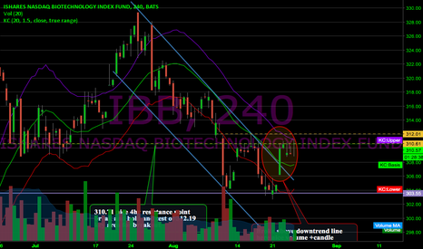 IBB: Struggling to close above 310.61
