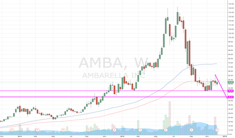 AMBA: Under my Ambarella