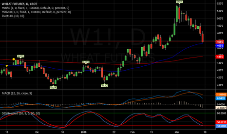 W1!: Wheat   -   Continua a scendere