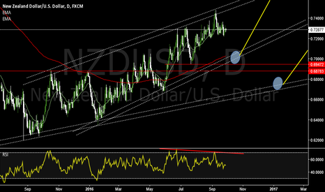 NZDUSD: waiting for long with the trend