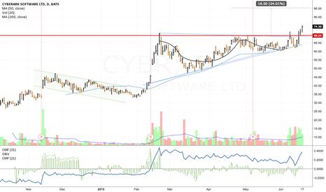 CYBR: CYBR Cup and Hangle