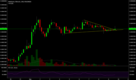 NAVBTC: Only going up from here. IMHO