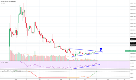 BRDBTC: $Brd Joined The Game