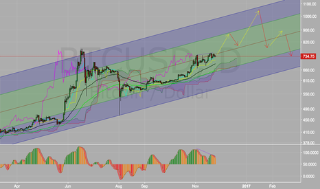 BTCUSD: Bitcoin the Future