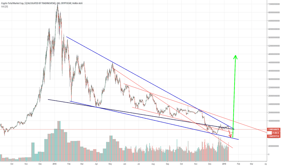 TOTAL: Bitcoin. Or much more pain first.