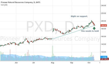 PXD: Support area