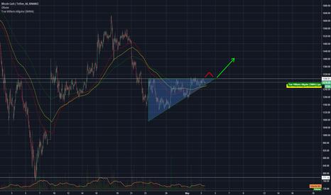BCCUSDT: Вероятный скорый рост Bitcoin Cash.