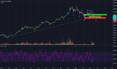 BTCUSD: Elliot Wave Bearish Scenario