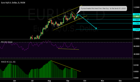 EURUSD: REVERSAL PATTERN OR DIVERGENCE    ( AT )