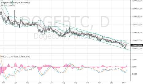 DOGEBTC: Watching DOGE to take position