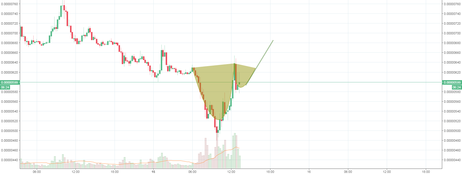 TRX WITH CUP AND HANDLE it is your choice