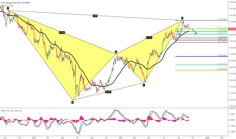 EURJPY: Bearish Bat for EURJPY, Target to 130
