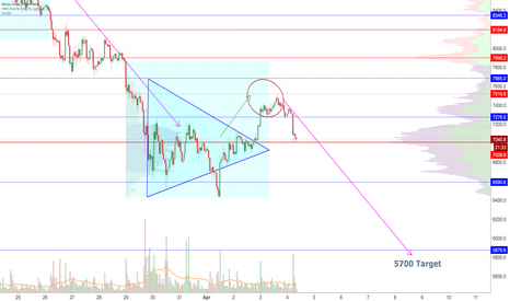 BTCUSD: Countertrend Rally hits target of 7500