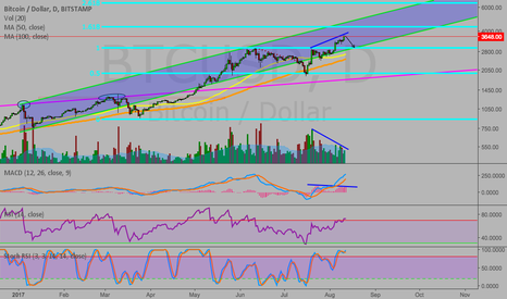 BTCUSD: Bitcoin back to $3000 before more up?