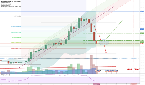 BTCUSD: Before the halving