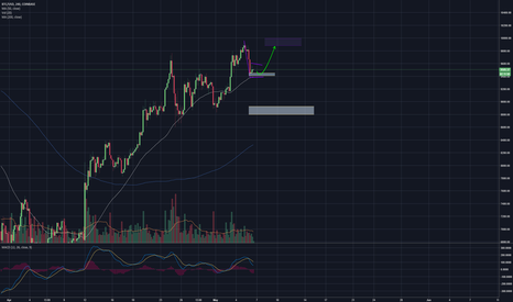 BTCUSD: Reversal of Bearflag Upwards to test 10k again