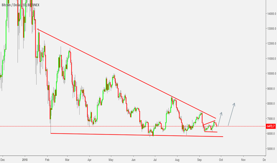 BTCUSD: BTCUSD - Long term Insights