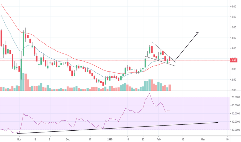 TGOD: Cooling off the RSI
