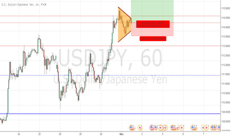 USDJPY: Day-Trade - 01/12. Open-Price 114.29.