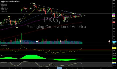 PKG: $PKG