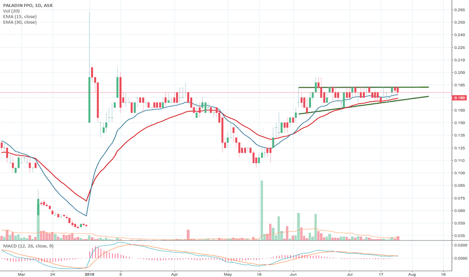 PDN: Paladin primed to breakout.
